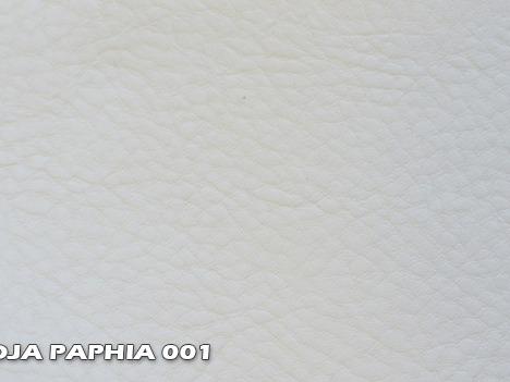 KOJA_PAPHIA_001