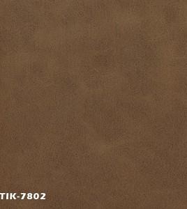 ANTIK-7802